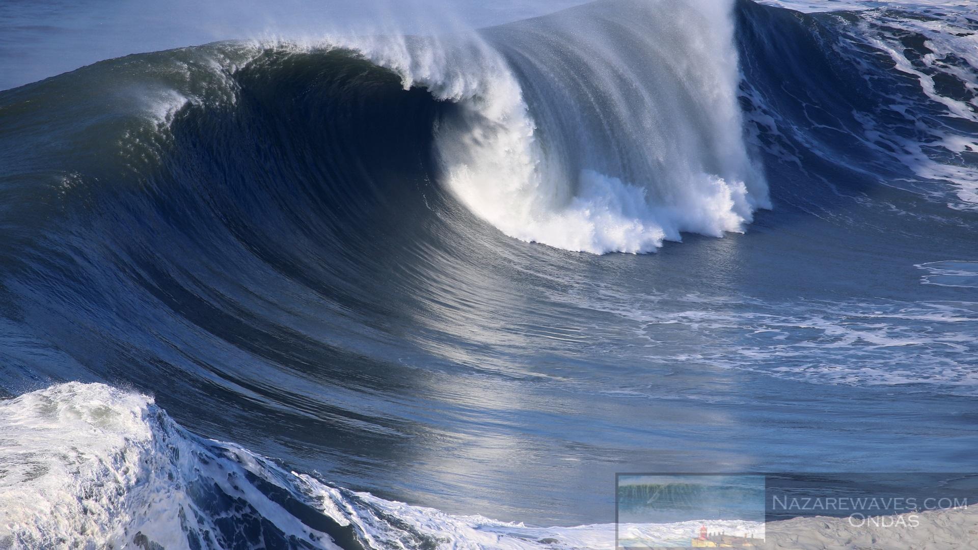 Adult waves